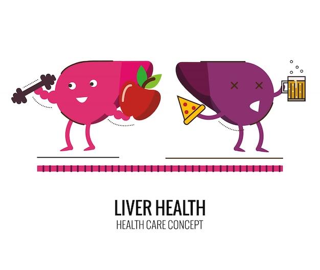 Fígado saudável e caráter hepático insalubre. perigo de álcool e colesterol. design plano de linha fino de caráter. ilustração vetorial