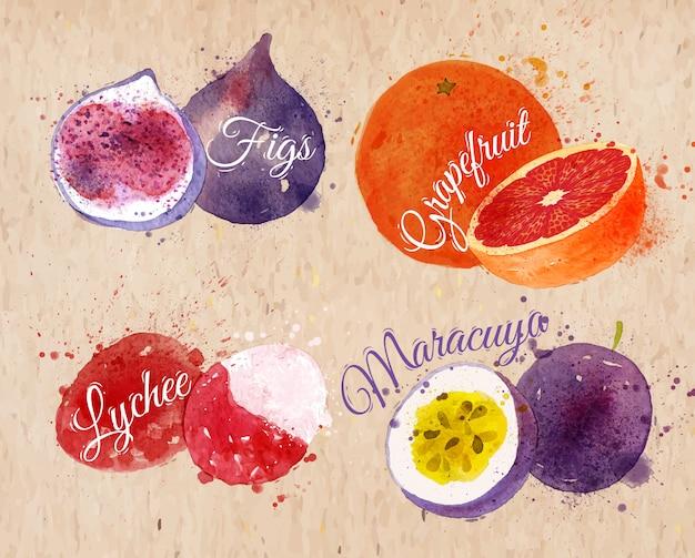 Figos de aguarela de fruta, toranja, kraft de lichia