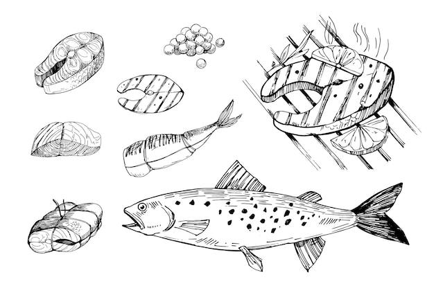 Filé de filé de salmão com comida de peixe contorno desenhado à mão convertido em vetor