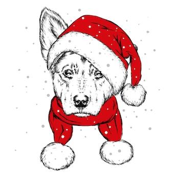 Filhote de cachorro bonito com um chapéu de papai noel. ano novo e natal.