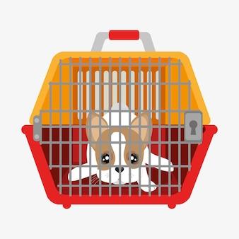 Filhote de cachorro bonito dentro de portador de plástico