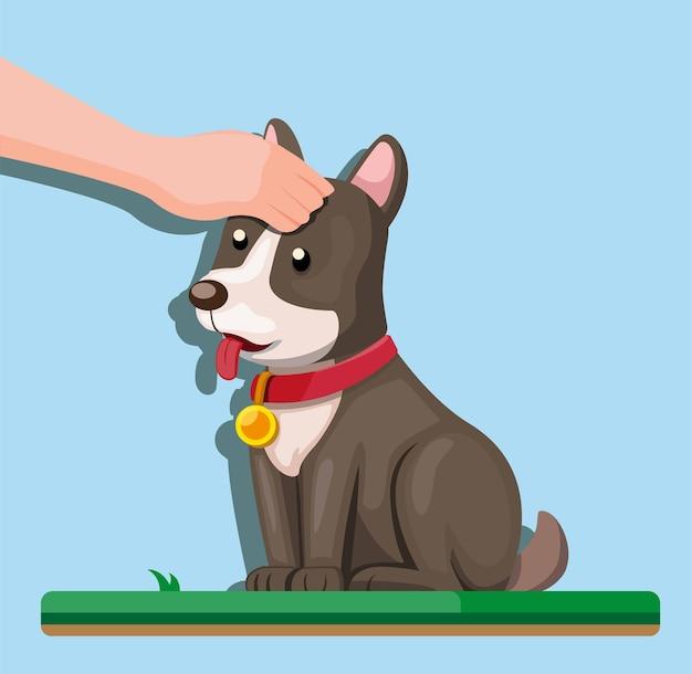 Filhote de cachorro de toque de mão humana, cachorro acariciando em ilustração plana de desenho animado