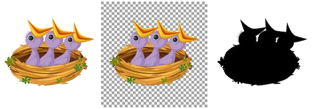 Filhote faminto esperando por comida no ninho