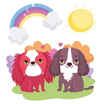 Filhotes de cachorro bonitos sentado arco íris sol nuvens