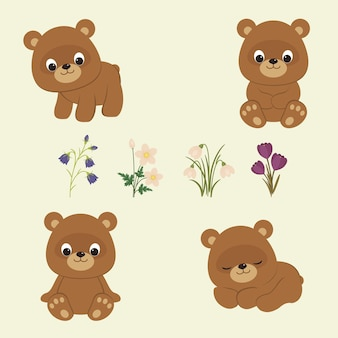 Filhotes de urso pardo e flores da primavera, campânulas anêmonas, snowdrops, açafrões, ilustração vetorial