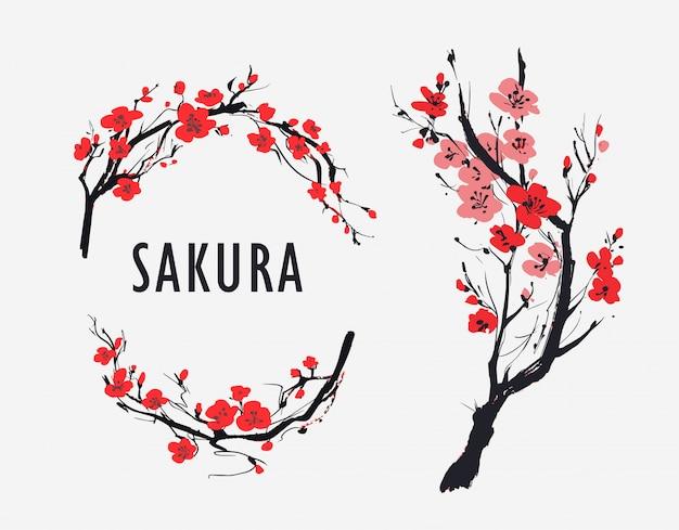 Filial de sakura com flores. ilustração vetorial
