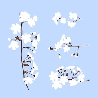 Filial de sakura e flores de cerejeira japonesa isoladas em estilo desenhado à mão plana