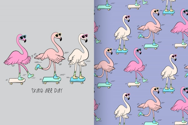 Flamingo bonito desenhada de mão com padrão vector set