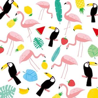 Flamingo, calau, verão