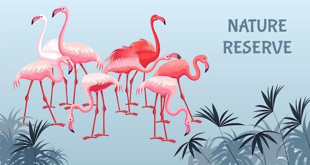 Flamingo de pôster