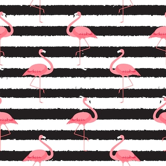 Flamingo rosa colorido isolado no fundo branco