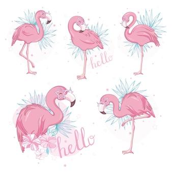 Flamingo rosa dos desenhos animados conjunto plano.