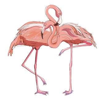 Flamingo rosa isolado no branco.