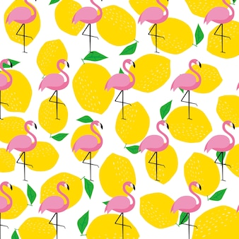 Flamingo, verão