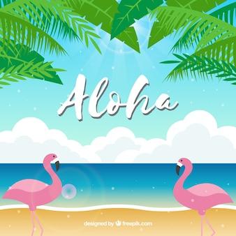 Flamingos beach aloha background