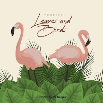 Flamingos e folhas de fundo