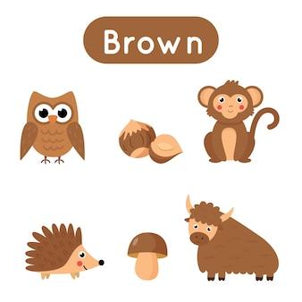 Flashcards para aprender cores. cor marrom. planilha educacional para crianças em idade pré-escolar. conjunto de fotos na cor marrom.