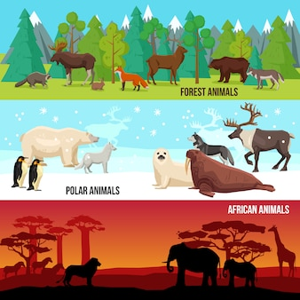 Flat animal banners set