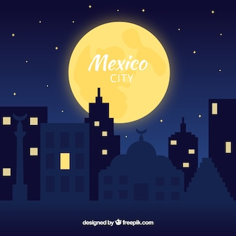 Flat mexico city at night background