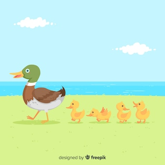 Flat mother duck e patinhos