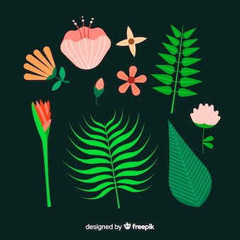 Flat tropical flores e folhas pacote