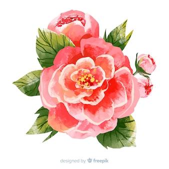 Flor coral aquarela colorida