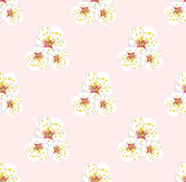 Flor de ameixa branca sem emenda no fundo rosa