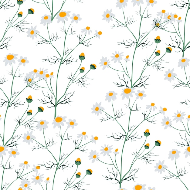 Flor de camomila com flor sem costura padrão