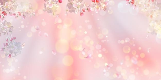 Flor de cerejeira e pétalas voadoras na primavera