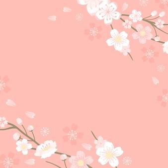 Flor de cerejeira rosa em branco fundo vectot