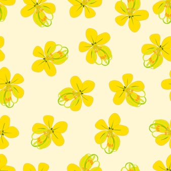 Flor de chuva dourada sobre fundo bege marfim