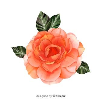 Flor de coral aquarela pintada à mão