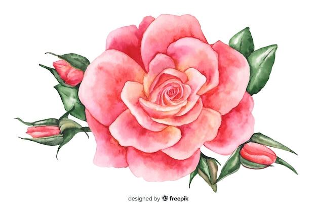 Flor de coral rosa aquarela