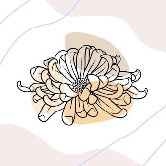 Flor de crisântemo desenhada à mão em estilo de linha de arte d