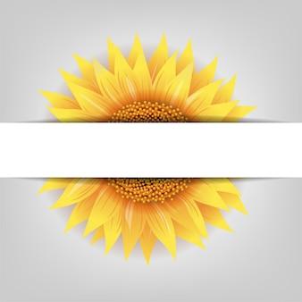 Flor de girassol com banner de papel com malha gradiente