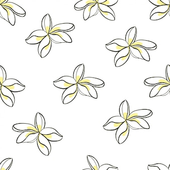 Flor de jasmim sem emenda