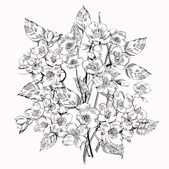 Flor de jasmim. vintage elegantes flores.