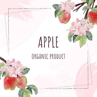 Flor de maçã em aquarela e quadro de frutas