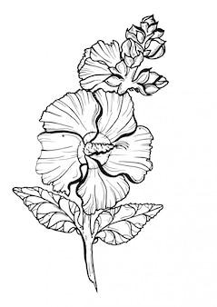 Flor de malva preto e branco