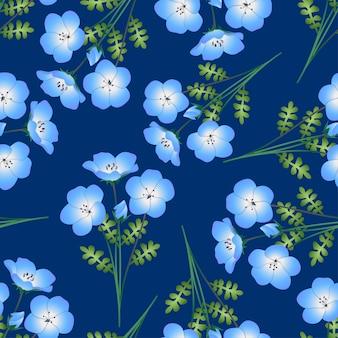 Flor de olhos azuis bebê nemophila sobre fundo índigo