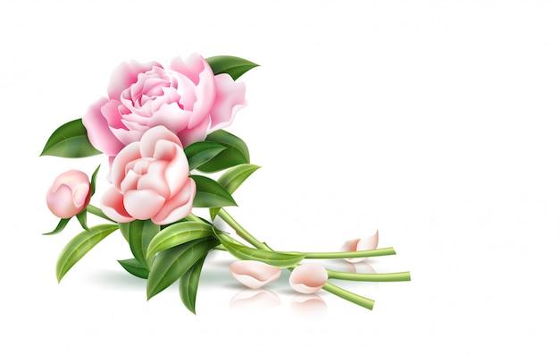 Flor de peônia rosa realista com buquê de folhas