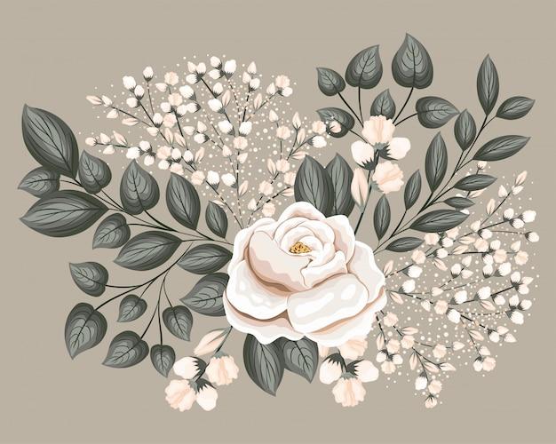 Flor de rosa branca com folhas, desenho de pintura, ornamento de planta de natureza floral natural, decoração de jardim