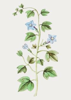 Flor de sino em estilo vintage