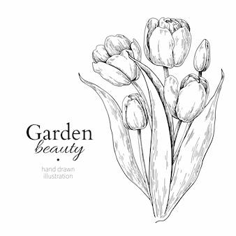 Flor de tulipa e desenho de buquê de folhas
