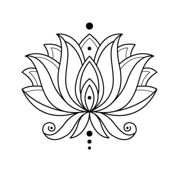 Flor desabrochando monocromática isolada no branco