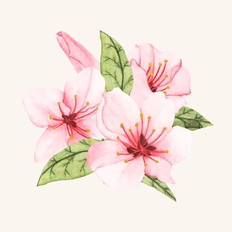Flor desenhada de mão isolada