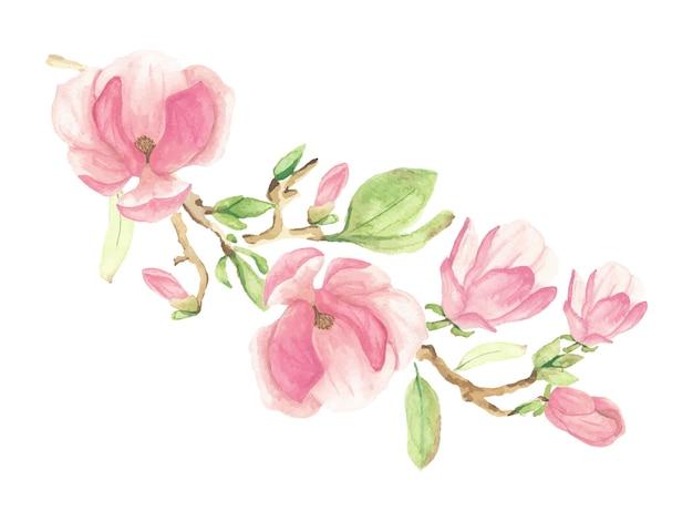 Flor e ramo de magnólia rosa aquarela florescendo
