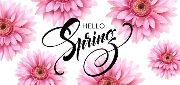 Flor gerbera e olá letras de primavera.