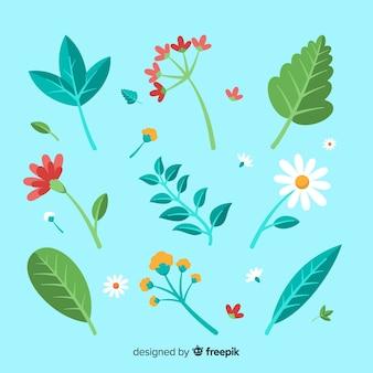 Flor plana e coleção de folhas