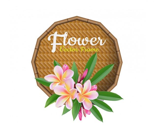 Flor plumeria ilustração vetorial real estilo